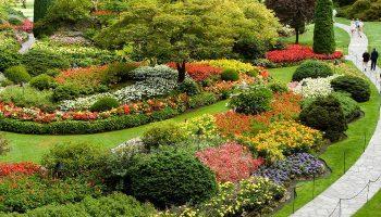¿Qué Significa Soñar con un Jardín?