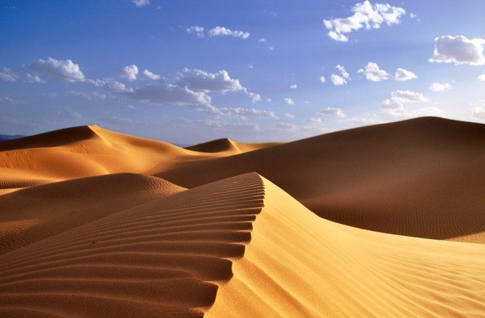 Soñar con un desierto
