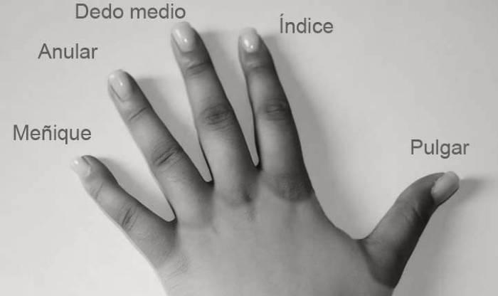 significado de soñar con dedos amputados
