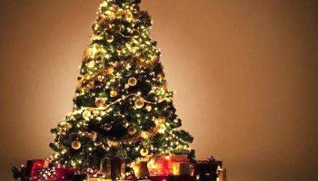 Significado de Soñar con un Árbol de Navidad
