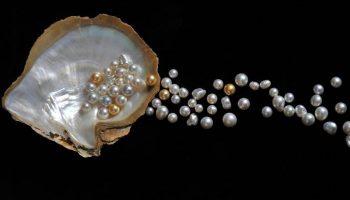 Significado de Soñar con Perlas