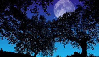 Significado de Soñar con Noche